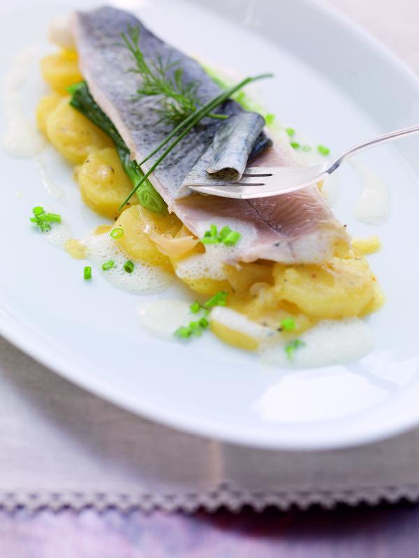 Forellenfilets blau gegart auf Kartoffel-Ingwer-Salat