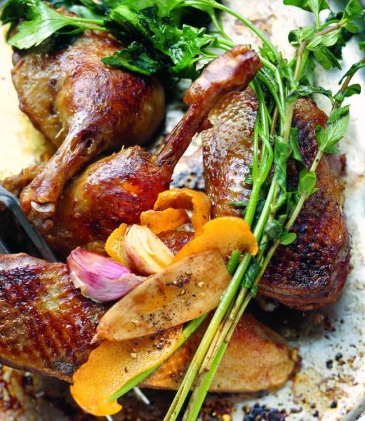 Gebratene Ente mit Sauce