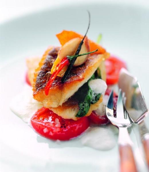 Kross gebratener Zander auf Tomatenmarinade mit Buttermilchschaum